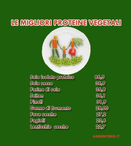 Le migliori proteine vegetali