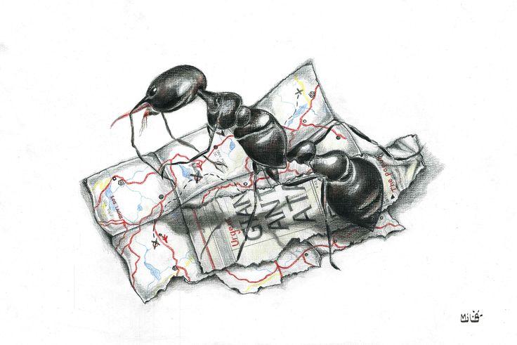 #hormiga #ilustraciones #lapices #milagalarreta #mapas #maps #ants