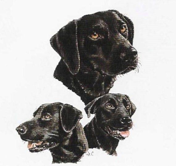"""GOLDEN RETRIEVER Multi-Dogs on TWELVE Identical 6/"""" Fabric Squares Quilt//Sew"""
