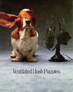 Ventilated Hush Puppies: Hush Puppies, Toms Mcelligott, Cards Photo, Ventil Puppies, Ventil Hush, Animal Dresses, Basset Hound, 1987 Fallon, Fallon Mcelligott