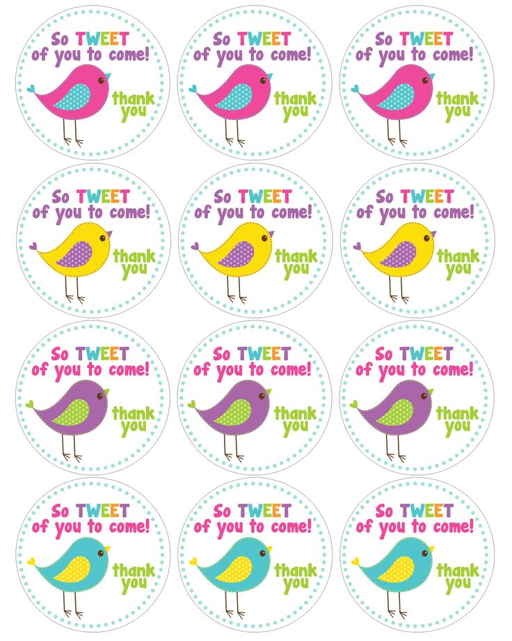 bird birthday cupcake toppers