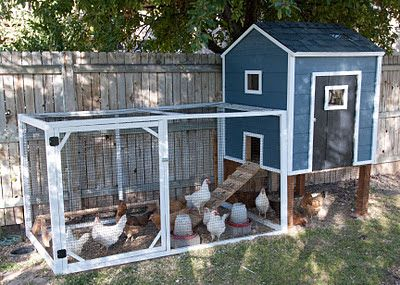 Build Your Own Chicken Coop - Spring housewivesofriverton.com DIY|Chicken|Chicken Coop|Spring|Farm
