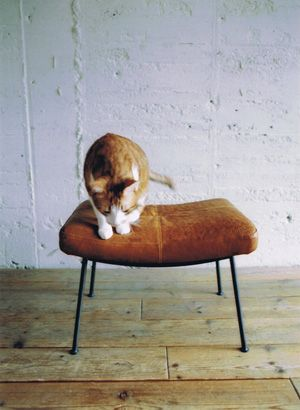 TRUCK|2. furrowed leather stool