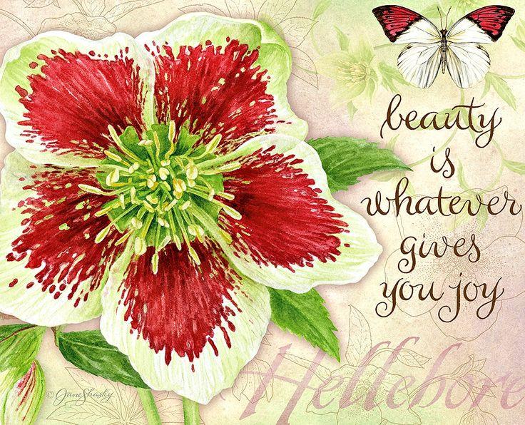 Jane Shasky / Botanical Inspiration / December 2016