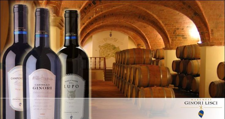 """Querceto Castle and Wine Tasting:   The secluded and deilighful """"borgo"""" ot Querceto, wheere the Marchesi Ginori Lisci Estate develops around a nucleus formed by the castle and the medieval village of Castello Ginori di Querceto. In the 16th century the castle was inherited by the Ginori family, who are also well'knows for their famous porcelains. The proprerty extends over a total area of 2000 hectares, 700 of which are cultivated for crops and the remainder in woodland."""