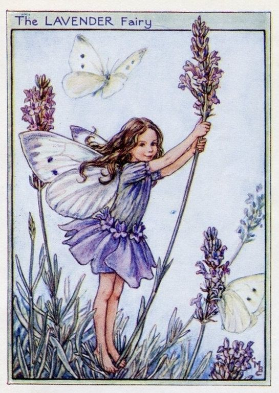 Lavender Flower Fairy Vintage Print, c.1950 Cicely Mary Barker Book Plate Illustration