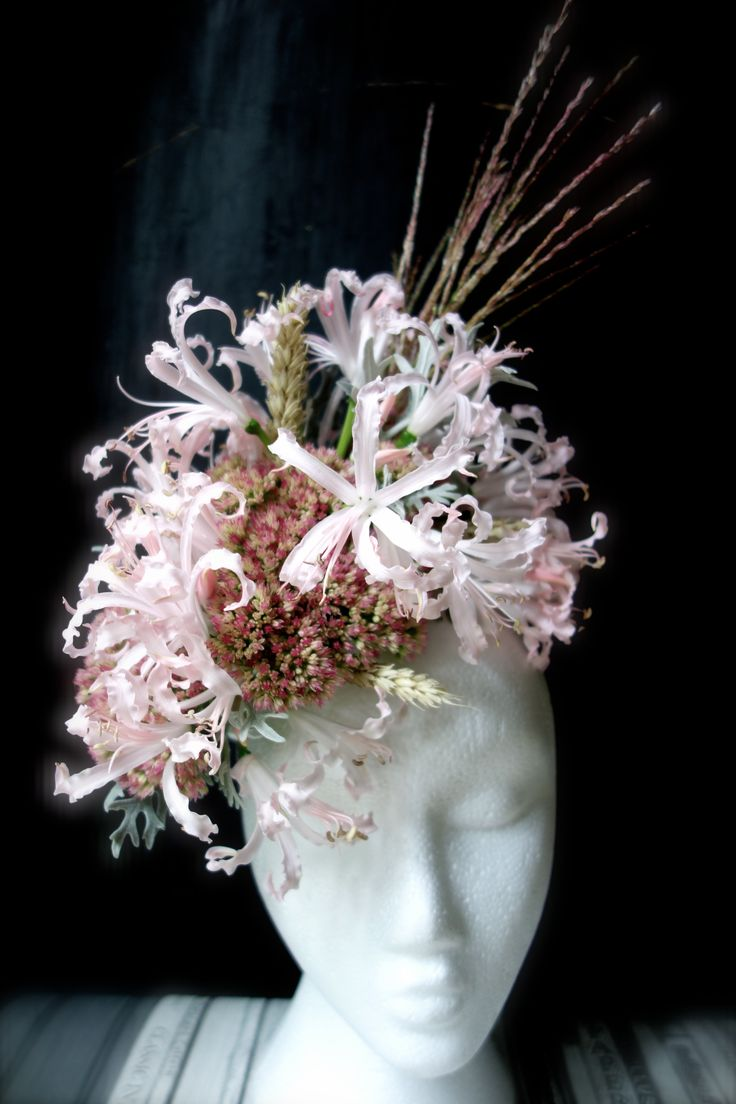 Fresh flower fascinator hat floral crown with nerine, sencio, sedum, grass www.vanessabirleyflorals.com