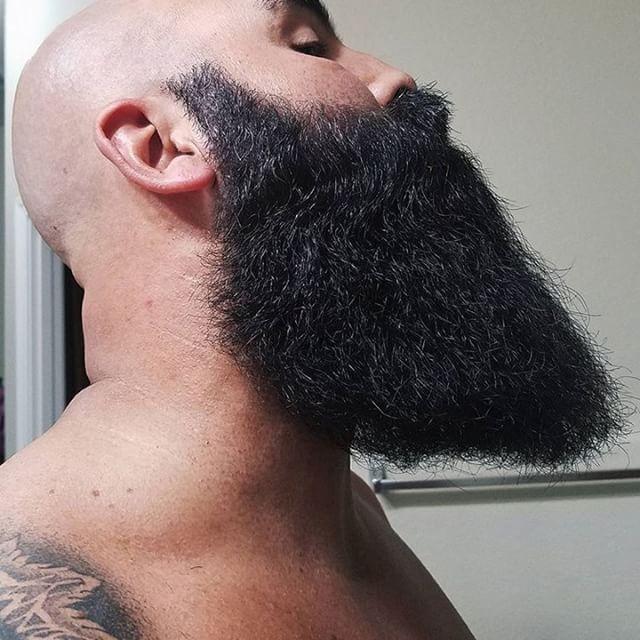 YES, mark has a beard alright.. Who thinks this is an epic beard? via @markhasabeard via @grizzlyadamuk