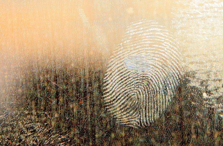 How Fingerprint Background Checks Work   http://activatemylicense.com/fingerprint-background-checks-work/