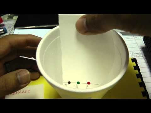 Simple paper chromatography - YouTube - you might want to mute the music :)