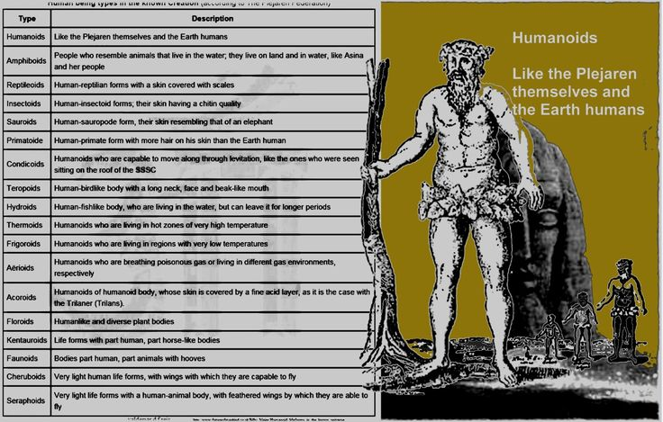 Human being types in the known Creation (according to The Plejaren Federation)  The non-humanoid life forms are called Peregrinhumanoids, which means strange-humanoids (Fremdartighumanoide). Note: There are no Reptiloids disguised as members of governments etc. on Earth! Additional information from Contact Report 228  Quetzal: 106. Known to us, in this galaxy, are only 2,630,000 highly developed human civilizations, which actually belong together, whereby, from other galaxies known to us, a…