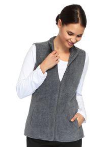 Blue Ink Polar Fleece Vest product photo
