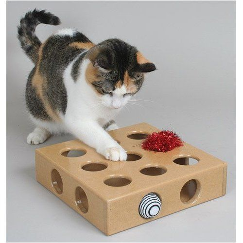 cat toy: Cats, Pet Toys, Toys Boxes, Toy Boxes, Toybox, Smartcat Peek, Peek And Plays, Plays Toys, Cat Toys