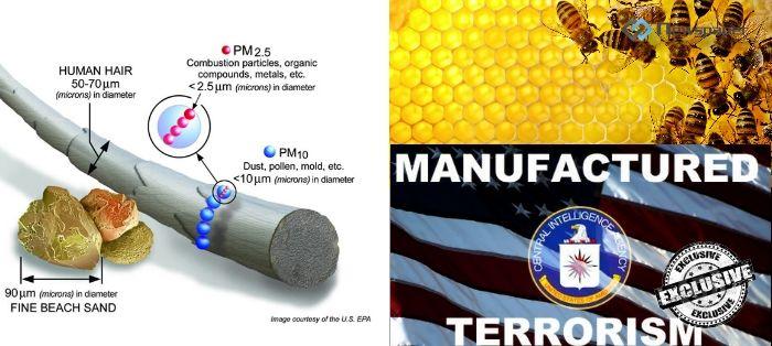 Smugi Chemiczne i Śmierć Pszczół czyli metoda na wprowadzenie GMO