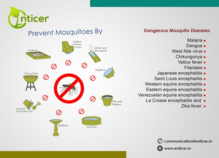 OMG! they are dangerous #mosquitoes  #enticergroups #organicproduct #MakeInIndia