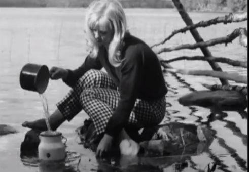 Käpy selän alla (1966), Mikko Niskanen.