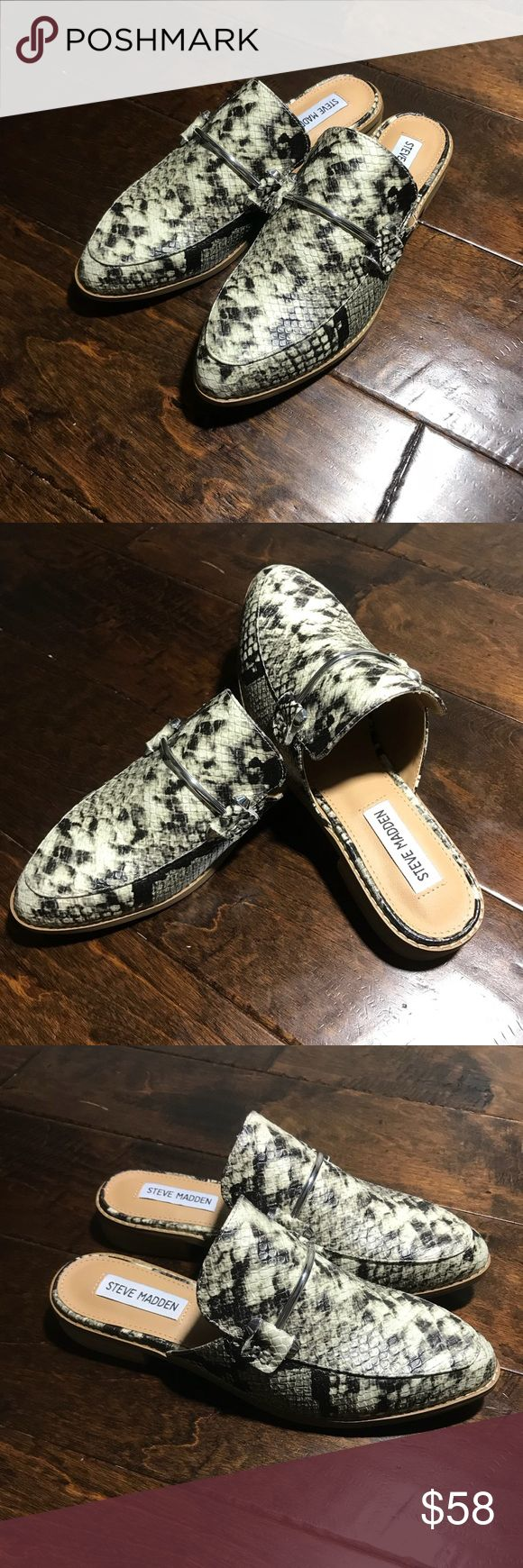 Steve Madden Laura Women Mules Loafers Brand new women Steve Madden Laaura Mule Loafer Snake Print Pointed Toe Shoes Size: 6.5M Smoke/Pet free home Steve Madden Shoes Mules & Clogs