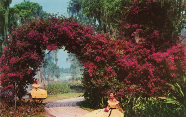 530ab16fb2f78ecc9be75283dd2a3be2 - Publix Cypress Gardens Blvd Winter Haven Fl