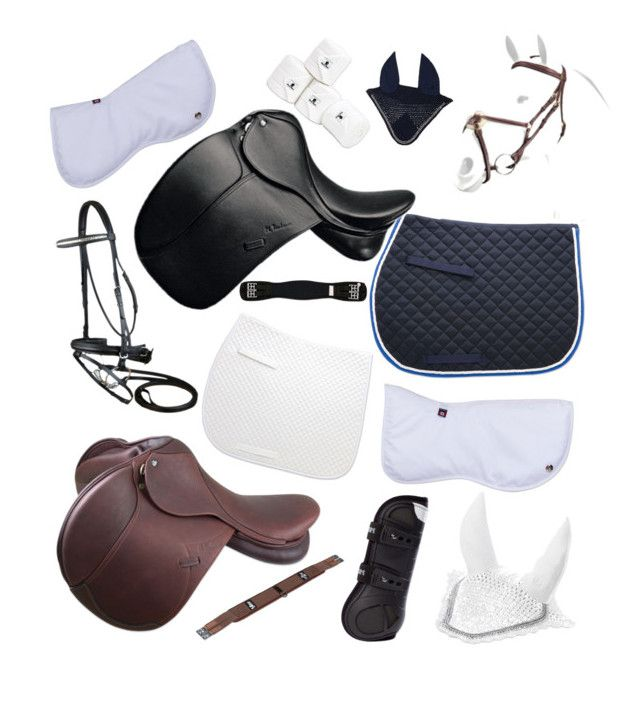 """""""Jumping and dressage set"""" by emilynrodgers on Polyvore"""