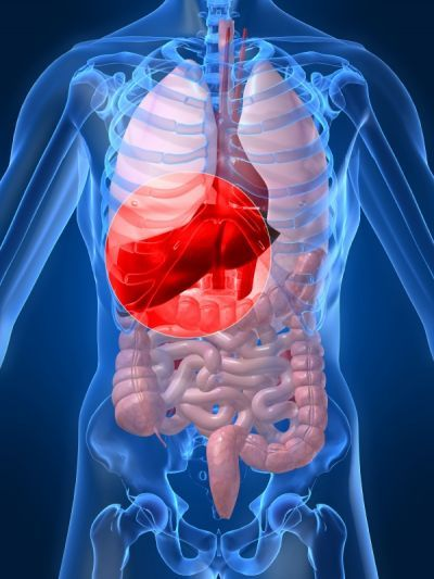 Afla care sunt simptomele hepatitei C si cum se poate contacta aceasta boala. Afland mai multe despre hepatita C, te vei putea feri de ea mai bine. #Boli #Sanatate pe AflaCum.ro