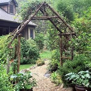 pergola - with wisteria in pots at each post.