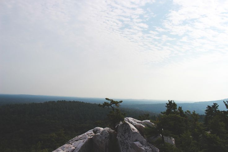 The view is so peaceful at the Crack trail