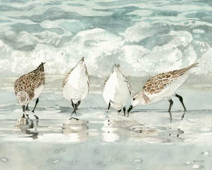 Sandra Galloways gallery of original and prints
