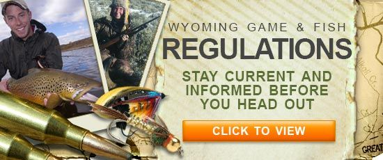 1000 images about wyoming road trip ideas on pinterest for Wyo game fish