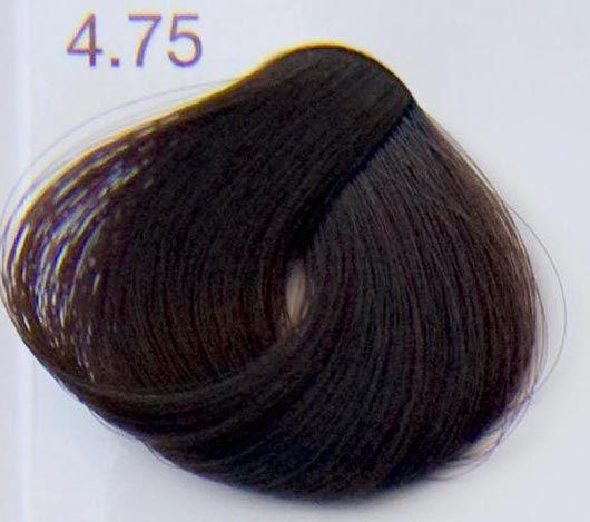 Farba do włosów czekolada