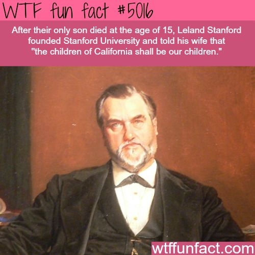 How Stanford University was founded - WTF fun facts