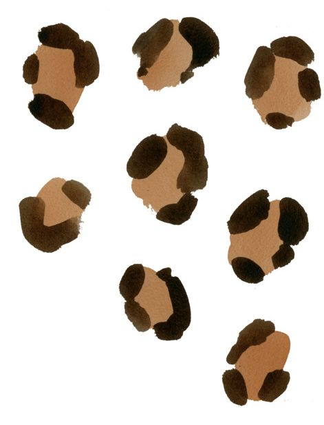 janelle thinks i should get a small cheetah print tattoo(: