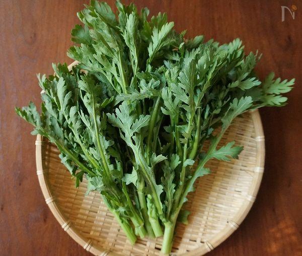 色鮮やかで香り豊かな春菊。鍋料理に使うイメージが定着していませんか? 春菊は栄養価も高く、いろんな食材と相性が良いので、鍋料理に使うだけではもったいない! 今回は春菊の美味しいアレンジレシピをご紹介します。