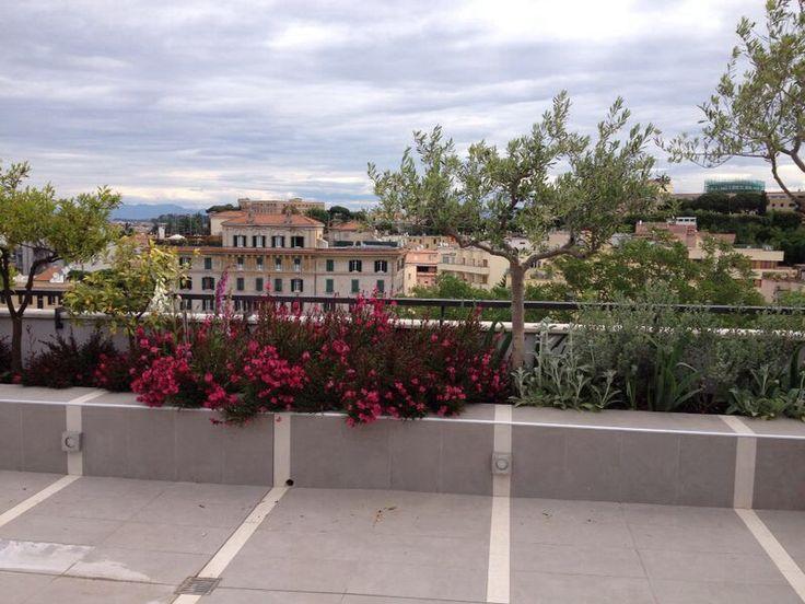 Roof San Pietro colors