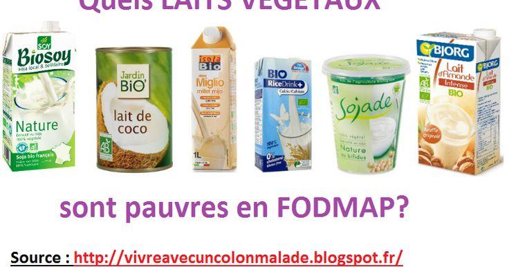 laits végétaux pauvres en FODMAP, liste, tableau, lait d'amande, lait de coco, lait de millet, lait de riz, lait de chataîgne, lait de noisette, lait de noix de macadamia, lait de quinoa, lait d'avoine, lait de soja à base de fèves de soja, lait de soja à base de protéines de soja