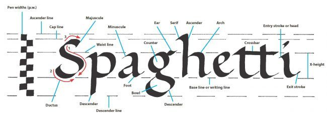 Scroll With It: Calligraphy Basics From 100 Things Every