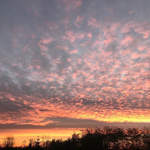 #nofilter #nofilterneeded #sky #colorfulclouds #simplelife #simplepleasures #beautifulworld #sunset #colorfulsunset #naturelovers #zachodslonca