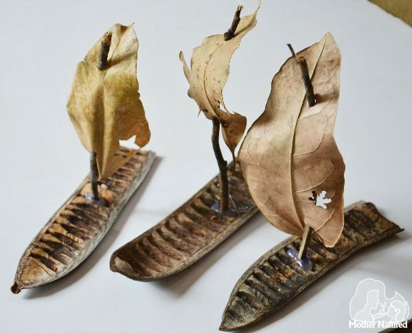 Fall nature crafts for preschoolers: seed pod boats at Mother Natured
