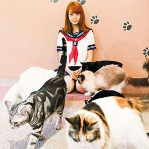 吾輩はキャット猫派である ViVi2013年8月号