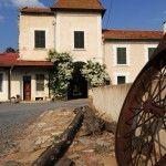 Chambre d'hôtes - Medjez El Bab - Côté ferme