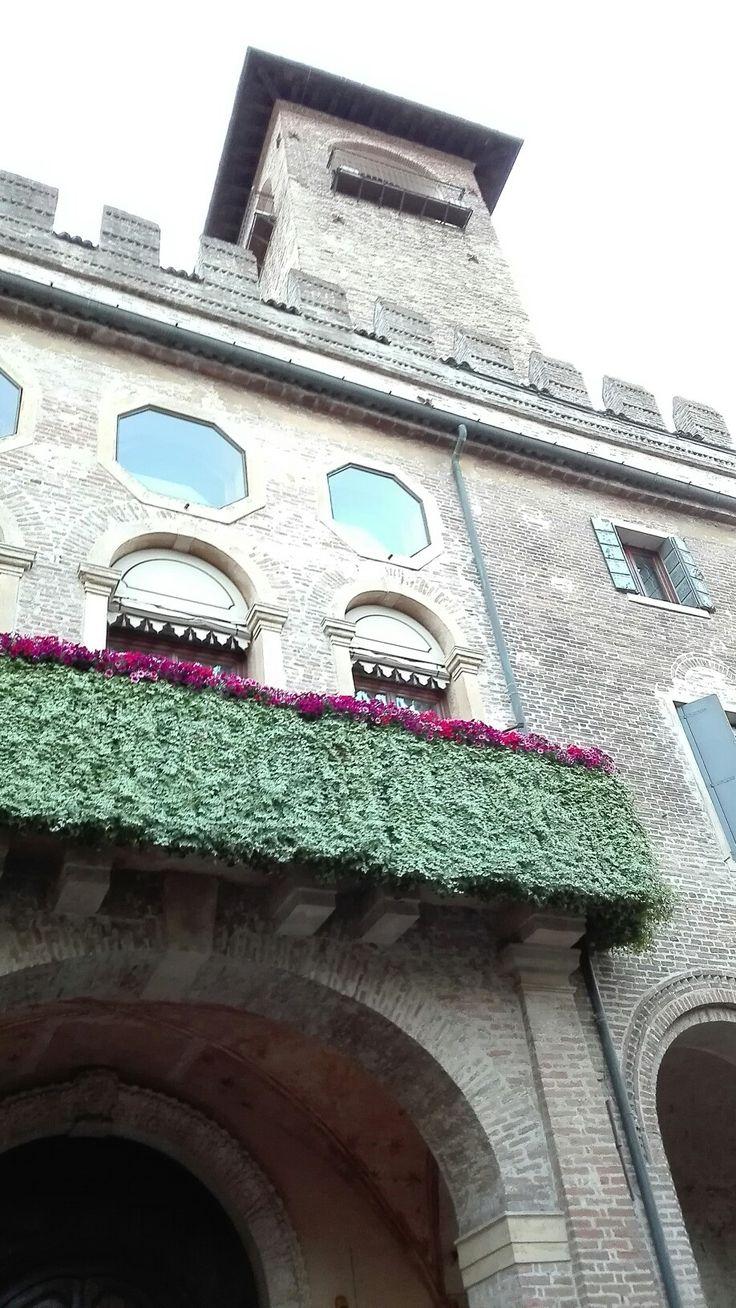 Padova, Via Umberto I