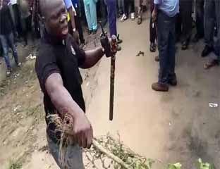 Heboh! Burung di Nigeria Berubah Wujud jadi Perempuan