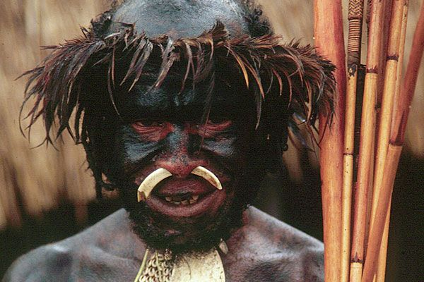 Traditional Balim Valley warrior garb.  ~West Papua~
