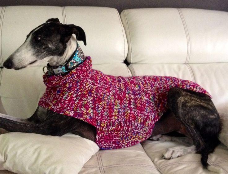 Best 75+ jerseys de punto para galgos - knit sweaters for greyhound ...