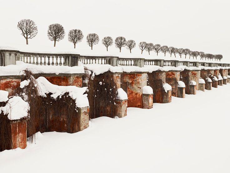 PATIENCE - Color Photographs by Josef Hoflehner & Jakob Hoflehner 28 Trees (Russia, 2010)