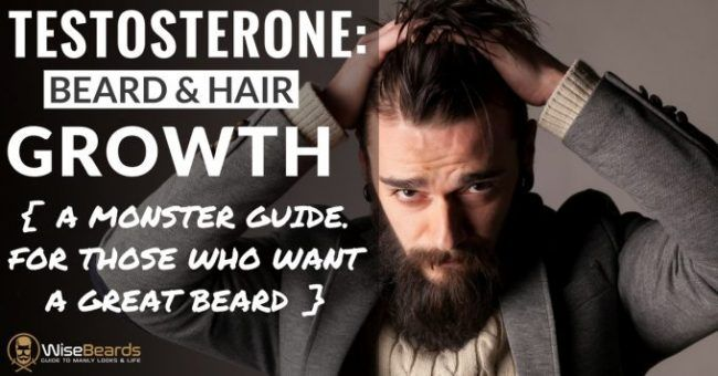 Learn everything about the effects of testosterone on beard & body hair, how to increase it, grow a great beard & look great & feel good.