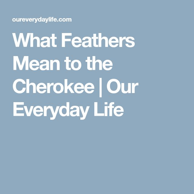 What Feathers Mean to the Cherokee | Our Everyday Life