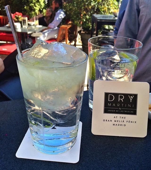 [GIN TONIC] ●  Excelentes cocktails para disfrutar una tarde soleada en la terraza del @granmeliafenix @drymartinijdlm @drymartinilondon  #gin #gintonic #cocktail #foodie #foodies #foodstagram #delicious #foodielicious #gourmet #caviarcitric #madrid #javierdelasmuelas #granmelia