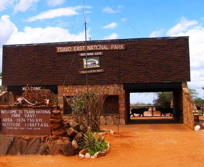 Tsavo - east national park - Kenya