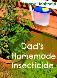 Homemade insecticide - garlic spray