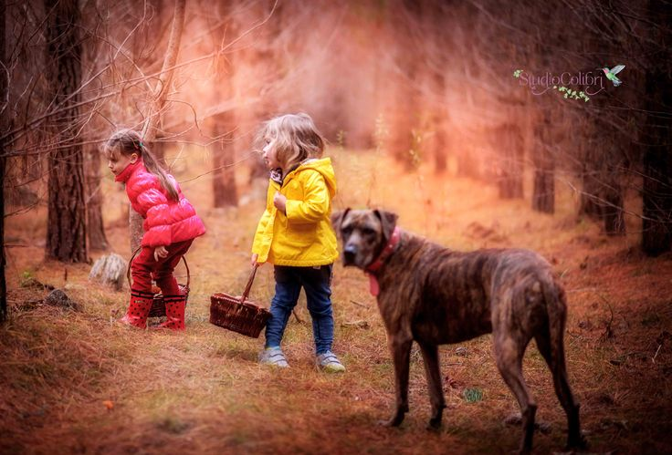 Kids with dog/forest ideas